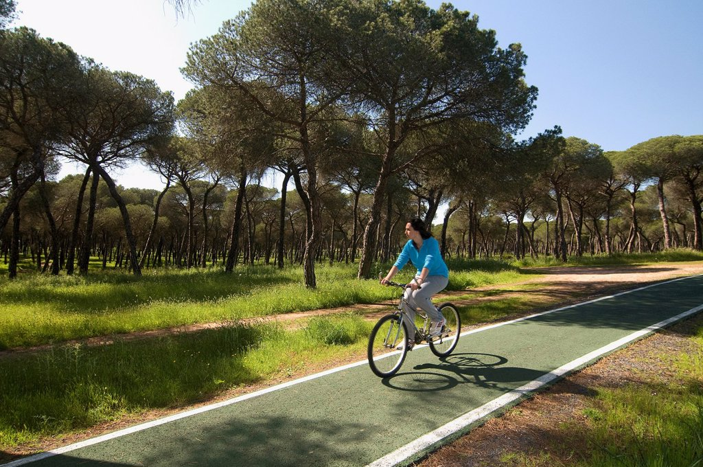 Stock Photo: 1566-1087903 Cyclist in «Vía multimodal»  Aljaraque  Huelva-province  Spain