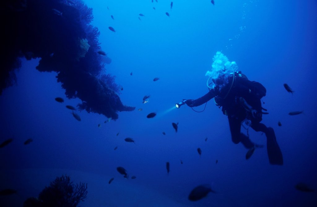 Stock Photo: 1566-1091197 Scuba diver exploring underwater surrounded by a school of fish