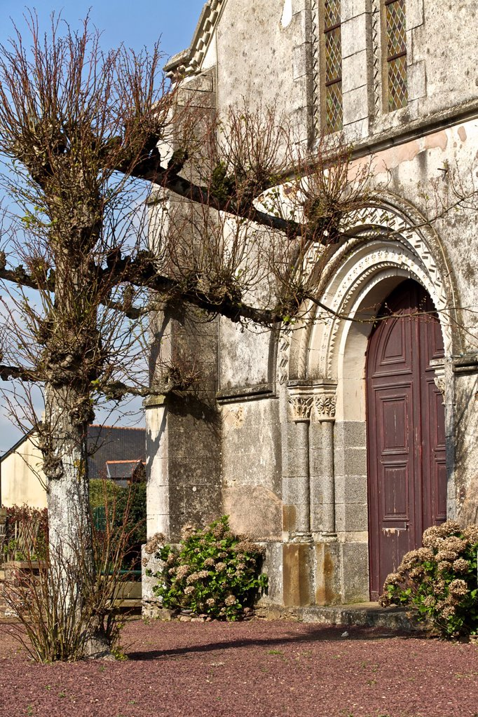 Stock Photo: 1566-1095558 st malon on mel, steeple of the village and unusual composition of trees. broceliande, Ille et Vilaine, Brittany, France