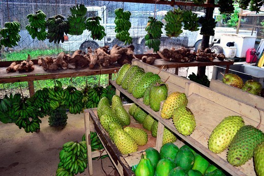 Locally grown vegetables and fruits, Local market, Pohnpei, Federated States of Micronesia. : Stock Photo