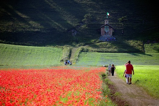 Country, Castelluccio di Norcia, Umbria, Italy : Stock Photo