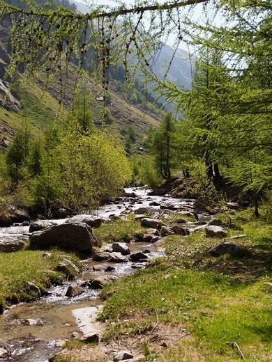 Stock Photo: 1566-1101108 Switzerland  Canton Wallis Nufenen Pass.