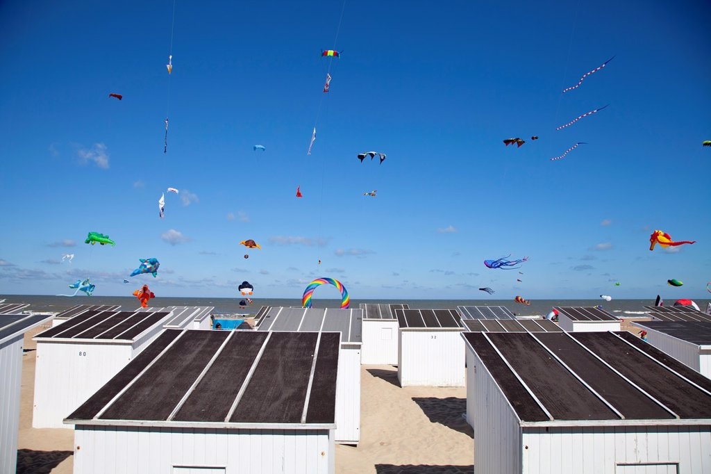 Stock Photo: 1566-1103892 International Kite Festival in Ostend, Belgium, Europe