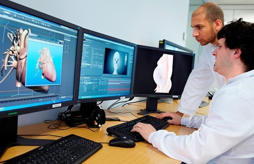 Stock Photo: 1566-1105418 Simulation of organ structure/function, heart image, Health and Biomedical applications. Simulation of organ structure/function, heart image, Health and Biomedical applications, Vicomtech-IK4 Visual Interaction and Communication Technologies Centre, applied research centre for Interactive Computer Graphics and Multimedia, San Sebastian Technology Park, Donostia, Gipuzkoa, Euskadi, Spain