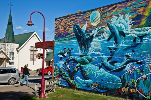 Whale and dolphin mural, Takaka, Golden Bay, New Zealand : Stock Photo