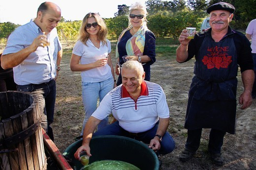 Russian visitors tasting grape juice of the firts pressing at the Delord estate, at Lannepax, Gers, Midi-Pyrenees, France : Stock Photo