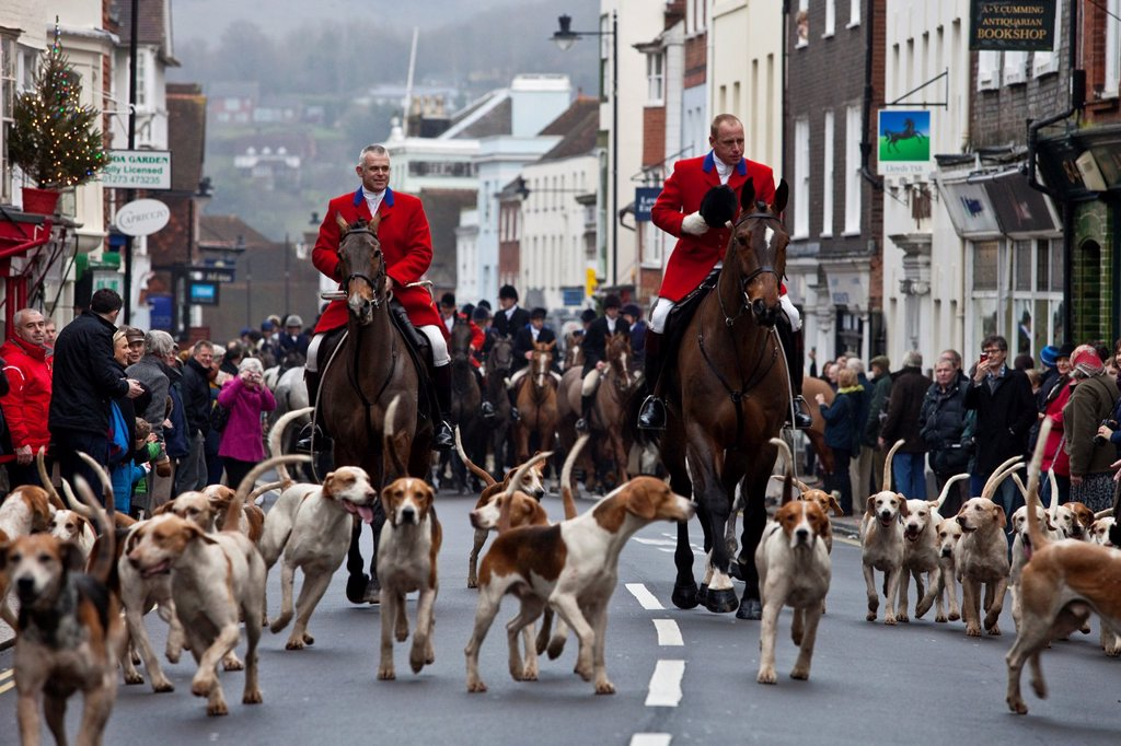 Stock Photo: 1566-1110751 The Southdown and Eridge Hunt at their annual boxing day meeting in Lewes, Sussex, England