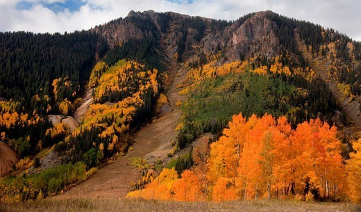 Autumn color in the San Juan Mountains of Colorado : Stock Photo