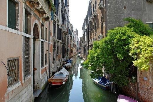 Stock Photo: 1566-1111760 Venice, Veneto, Italy, Europe