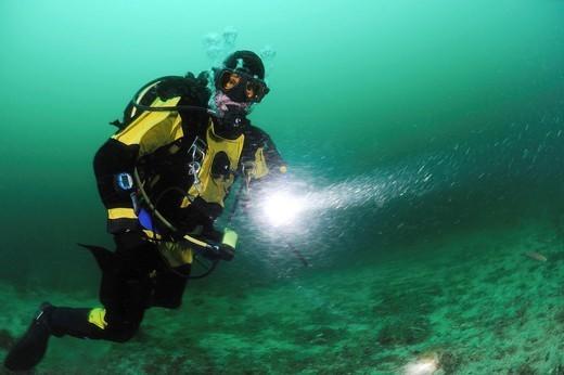 Stock Photo: 1566-1113878 Scuba diver with dive light, Santa Cruz Island, California, USA