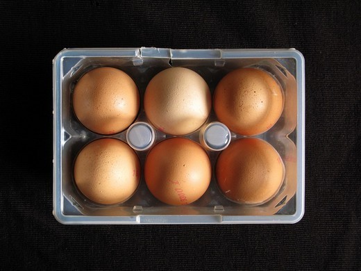 6 Brown Eggs in an Opened Damaged Clear Carton : Stock Photo