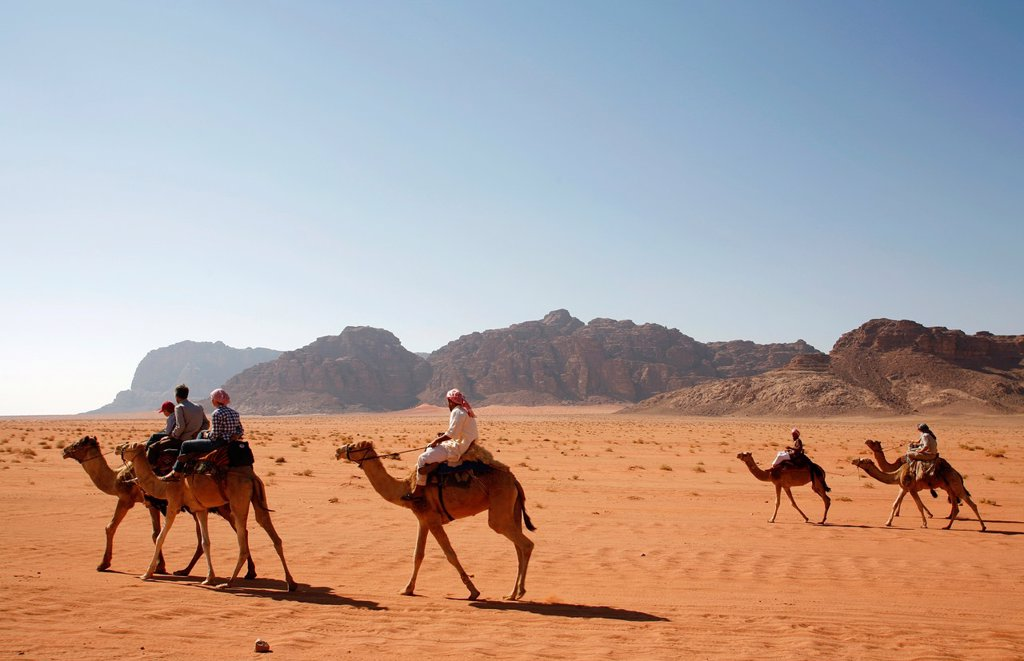 Tourists riding camels in the desert, Wadi Rum, Jordan : Stock Photo
