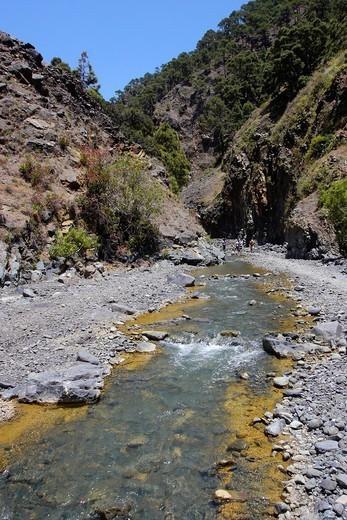 Stock Photo: 1566-1118155 Barranco de las Angustias, Taburiente River, Caldera de Taburiente National Park, Biosphere Reserve, ZEPA, LIC, La Palma, Canary Islands, Spain, Europe