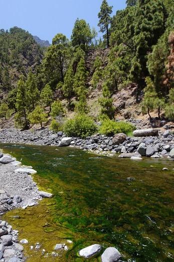 Stock Photo: 1566-1118156 Barranco de las Angustias, Taburiente River, Caldera de Taburiente National Park, Biosphere Reserve, ZEPA, LIC, La Palma, Canary Islands, Spain, Europe