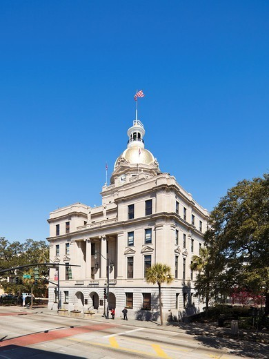 City Hall, Savannah : Stock Photo