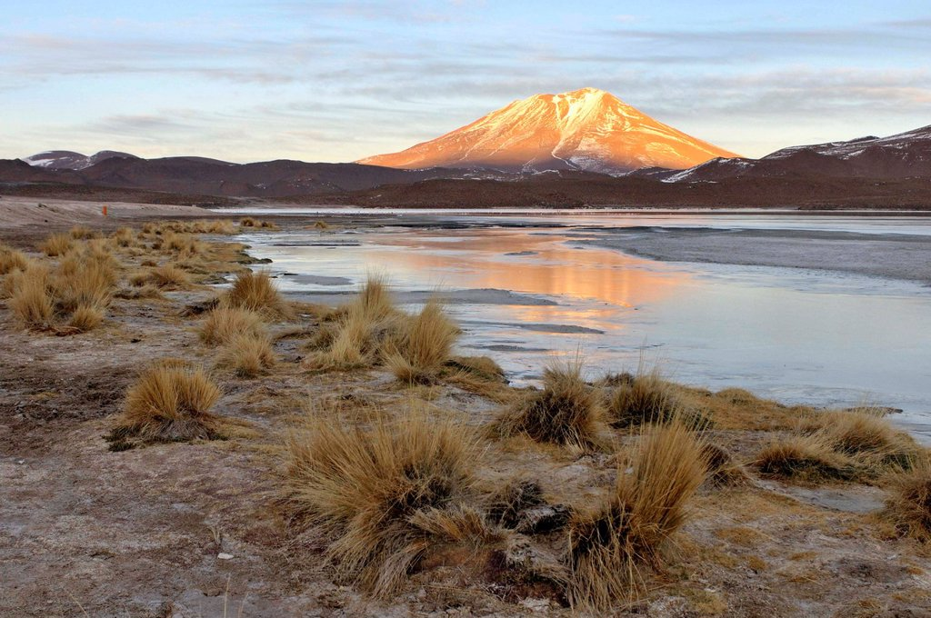 Stock Photo: 1566-1121239 Laguna Hedionda is a saline lake in the Nor Lípez Province, Potosí Department in Bolivia. It is notable for various migratory species of pink and white flamingos.