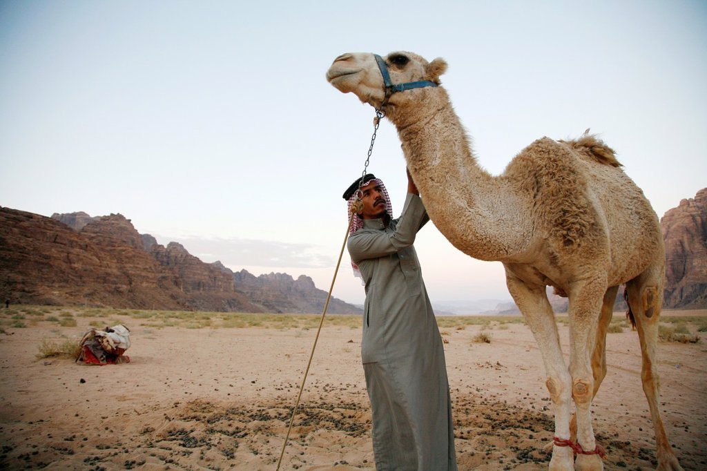 Stock Photo: 1566-1122033 Bedouin man and his camel, Wadi Rum, Jordan