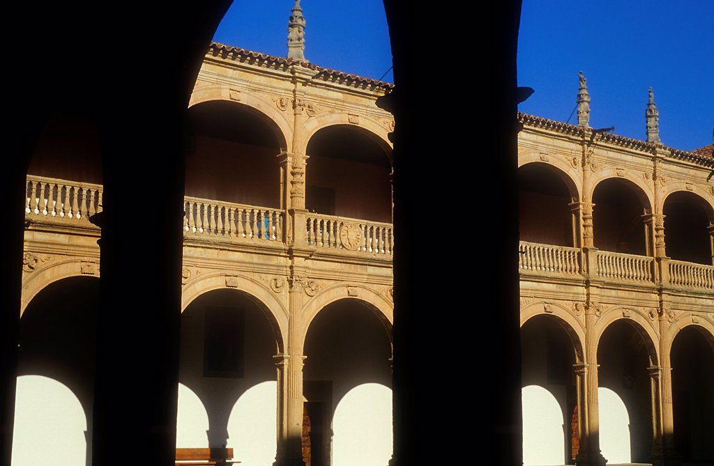 Stock Photo: 1566-1122234 Colegio Fonseca,Salamanca,Spain