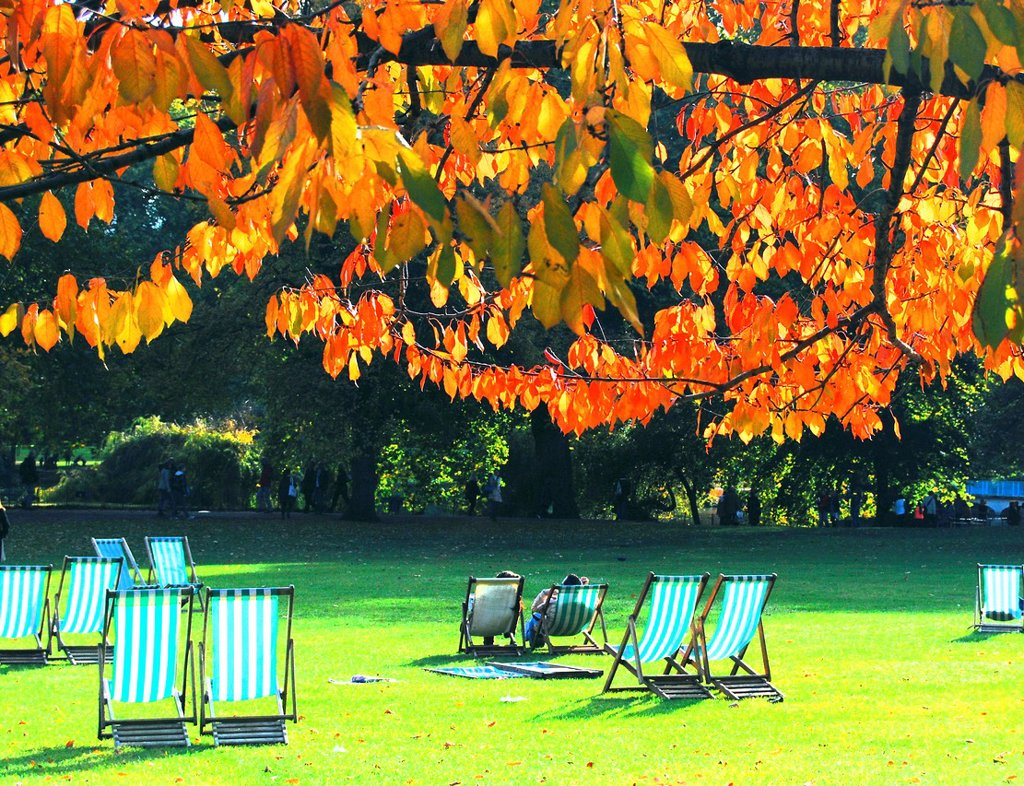Visitors enjoy a sunny Autumn/ Fall day in St  James´s Park, London, England : Stock Photo