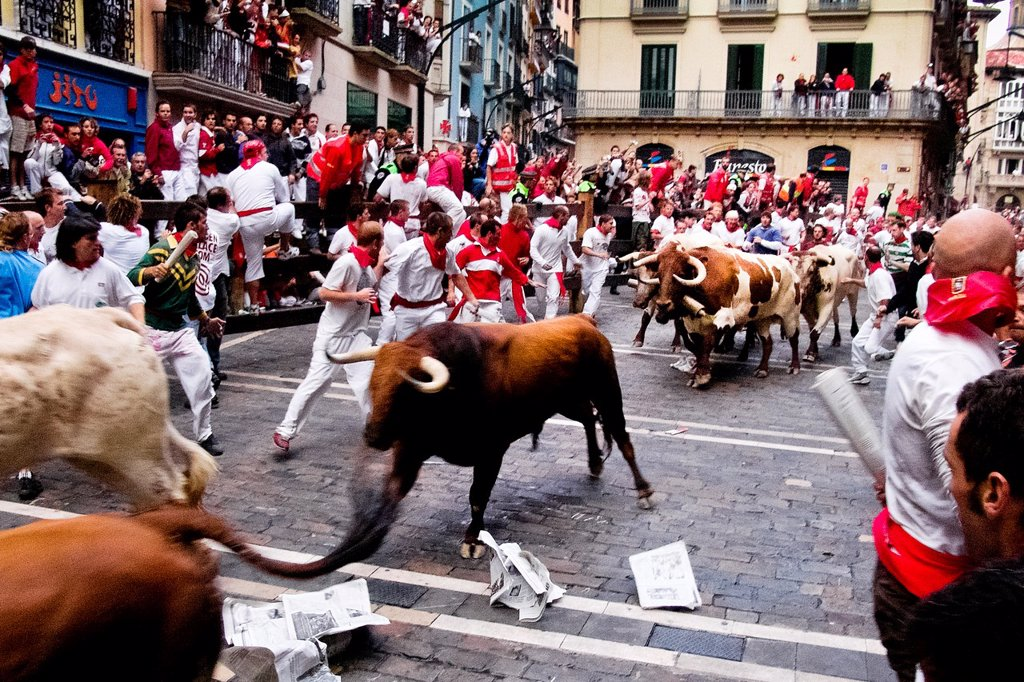 Stock Photo: 1566-1127898 The Running of the Bulls encierro de los toros during the San Fermín fiesta in Pamplona, Spain, 8 July 2005