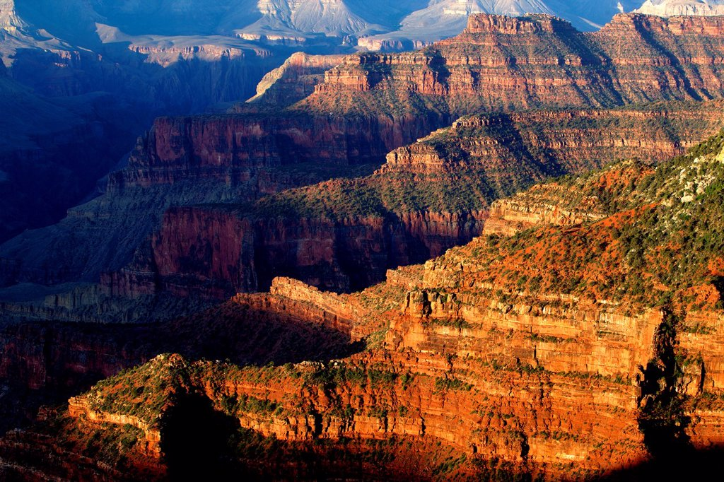 Stock Photo: 1566-1129121 Grand Canyon North Rim, Grand Canyon National Park, Arizona, USA