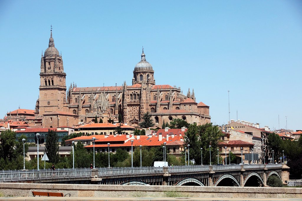 Stock Photo: 1566-1129413 Panoramic view of the Cathedral and the bridge Tormes, Salamanca, Castilla y Leon, Spain, Europe