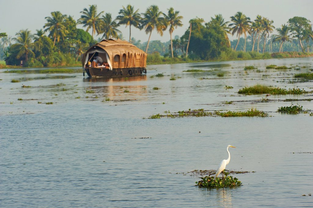 India, Kerala state, Allepey, backwaters, houseboat for tourist : Stock Photo
