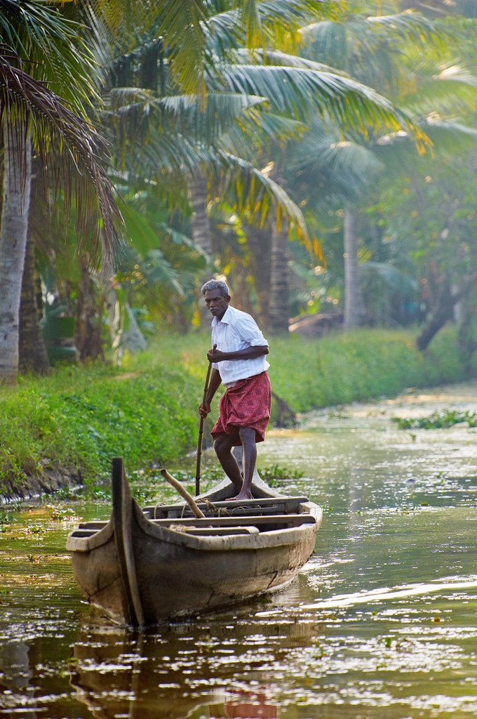 Stock Photo: 1566-1132633 India, Kerala state, Allepey, backwaters