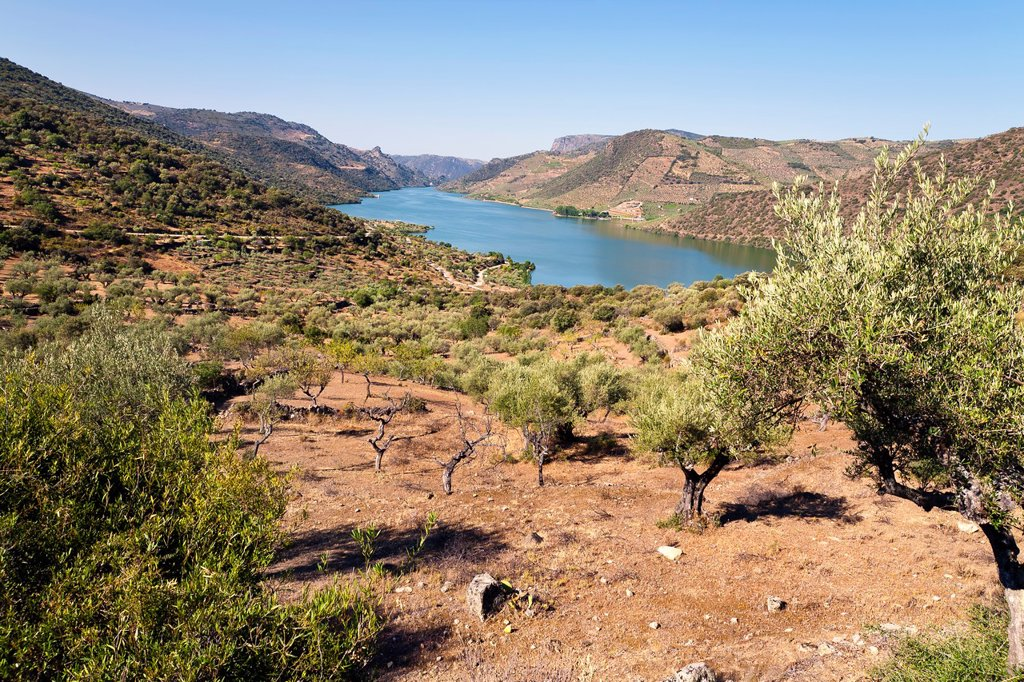 Stock Photo: 1566-1133898 Saucelle reservoir in the Arribes del Duero  Vilvestre  Salamanca  Castilla León  Spain