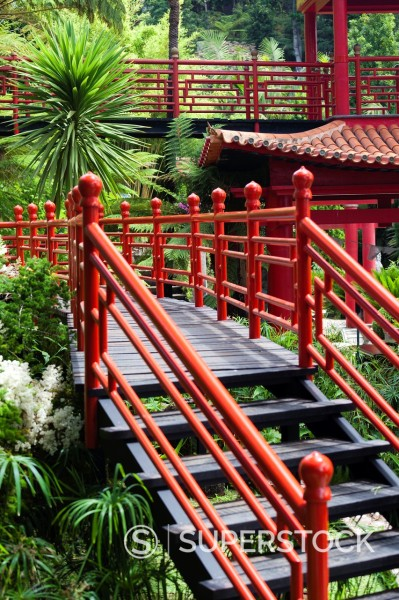 The Jardim Botanico on Madeira is a historic garden full of tropical plants and flowers, and statues from all over the world  There is a Japanese garden with oriental statues, pots and planting : Stock Photo