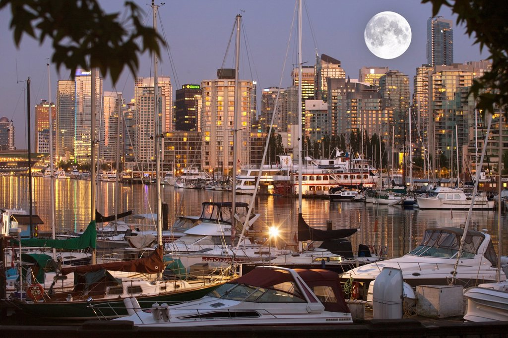 COAL HARBOUR FROM STANLEY PARK DOWNTOWN SKYLINE VANCOUVER BRITISH COLUMBIA CANADA : Stock Photo