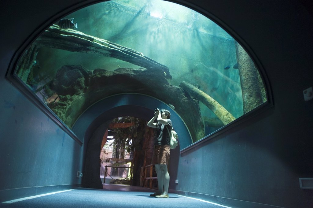 Stock Photo: 1566-1145280 Aquarium of the City of Arts and Sciences, Valencia, Spain
