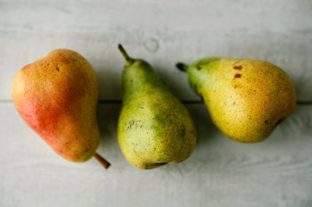 Stock Photo: 1566-1148241 Pears