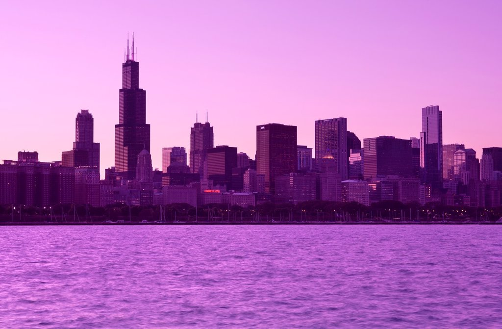 WILLIS (SEARS) TOWER LAKE SHORE SKYLINE DOWNTOWN CHICAGO ILLINOIS USA : Stock Photo