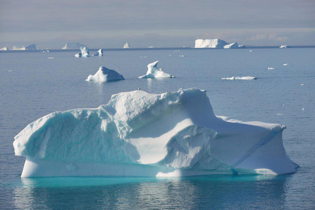 Stock Photo: 1566-1149472 Greenland, Baffin Bay, Nuussuaq, Icebergs