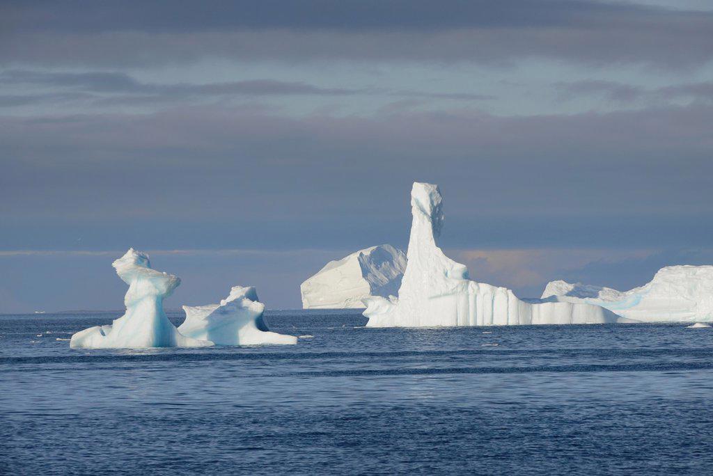 Greenland, Baffin Bay, Nuussuaq region, Icebergs : Stock Photo
