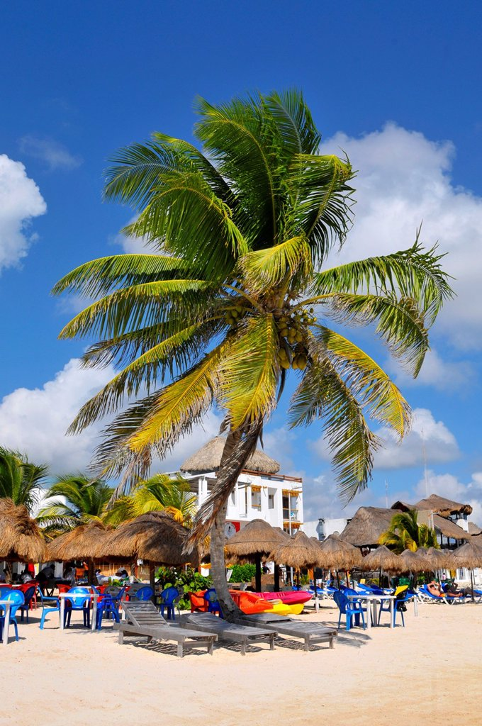 Stock Photo: 1566-1153186 Costa Maya Mexico Beach Caribbean