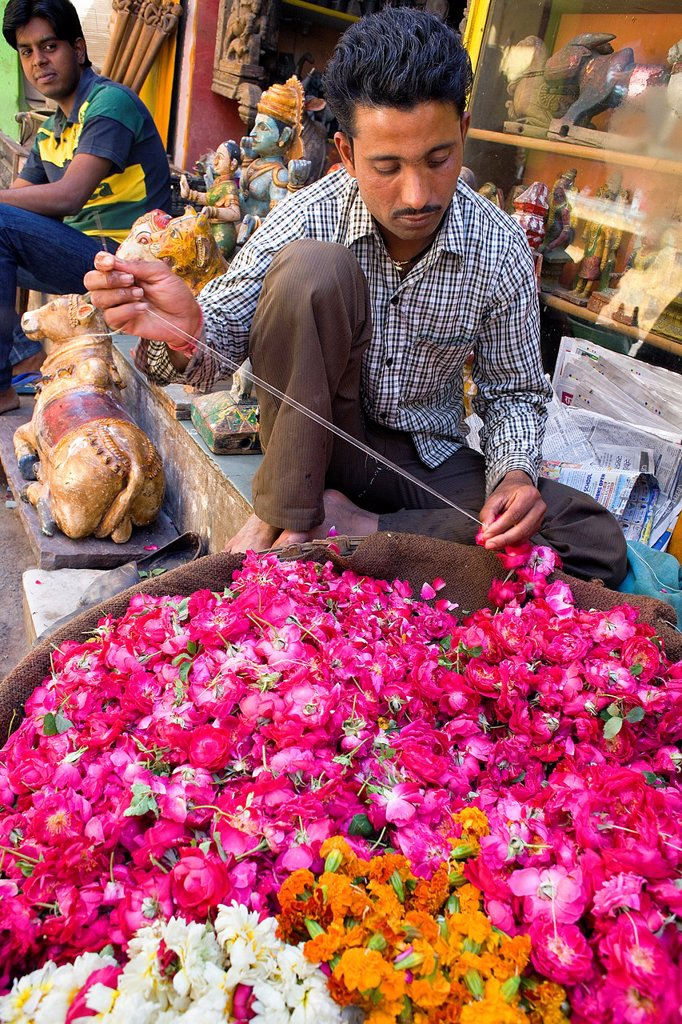 Stock Photo: 1566-1157818 Flower vendor,pushkar, Rajasthan, india