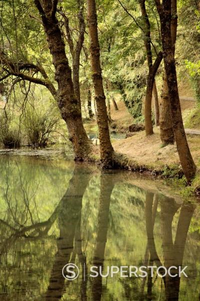 Fontibre, nacimiento del río Ebro,Hermandad de Campoo de Suso, Cantabria, España : Stock Photo