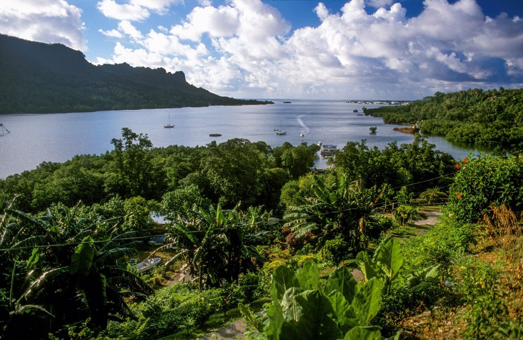 Stock Photo: 1566-1160313 The harbour at Pohnpei Ponape, Federated States of Micronesia