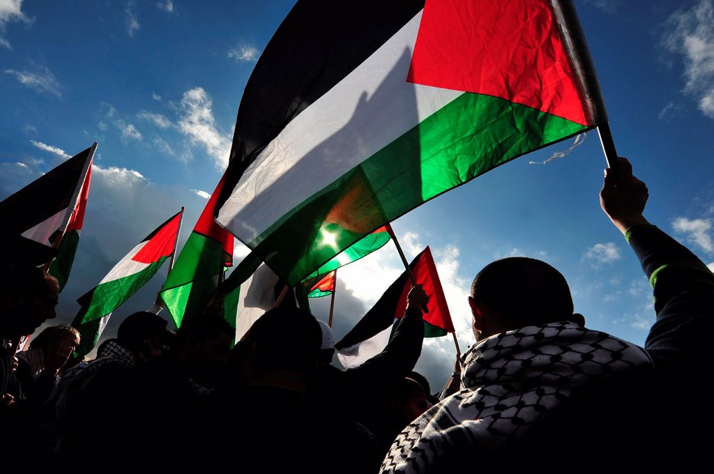 Stock Photo: 1566-1160659 Silhouette of Palestinian men waving Palestinian flag