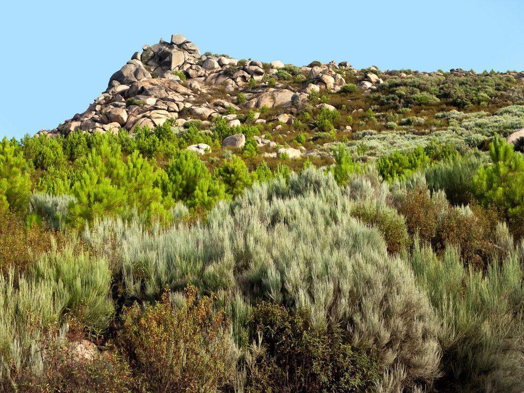 Sierpe cliff from the Zahurdón road  Sierra de Gredos  Pedro Bernardo  Ávila  Castilla León  España : Stock Photo