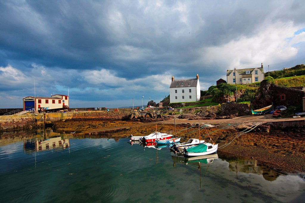 Stock Photo: 1566-1162167 St Abbs, Summertime, Scotland, UK