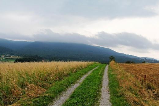 Stock Photo: 1566-1162200 Landscape
