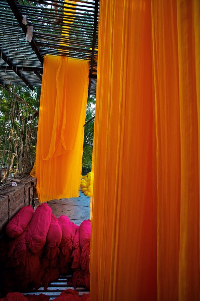 Stock Photo: 1566-1167746 Drying saris  Jodhpur  Rajasthan  India.
