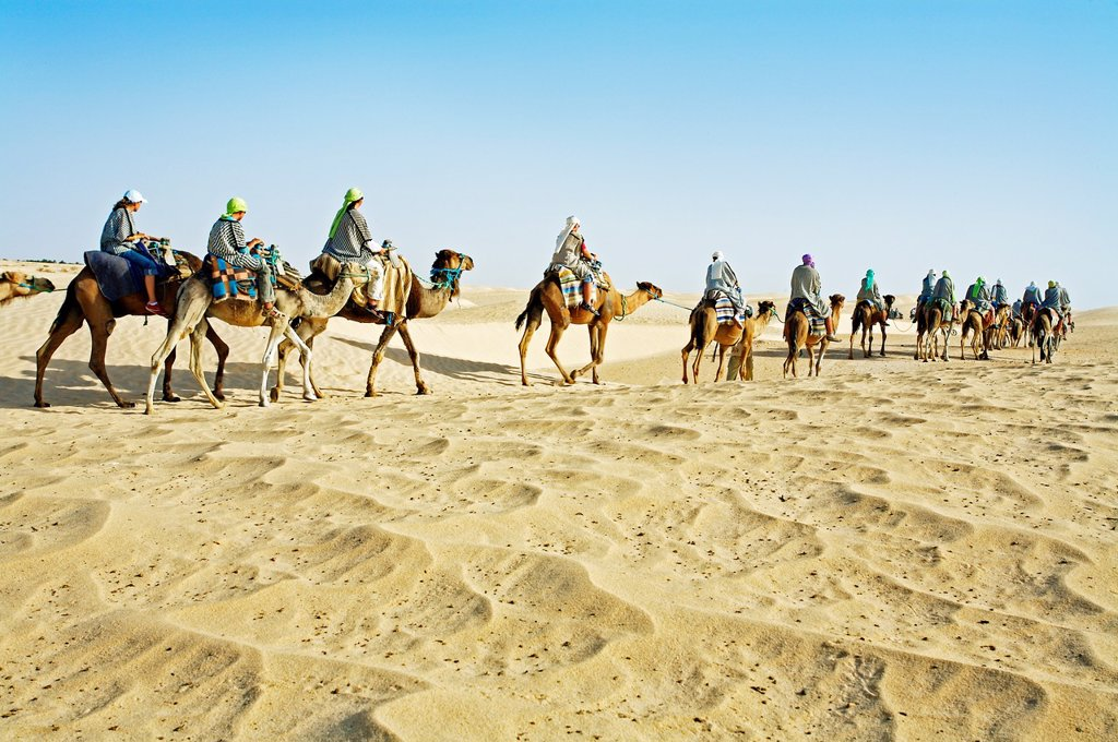 Stock Photo: 1566-1167848 Tourists riding camels  Sahara Desert, Douz, Tunisia.