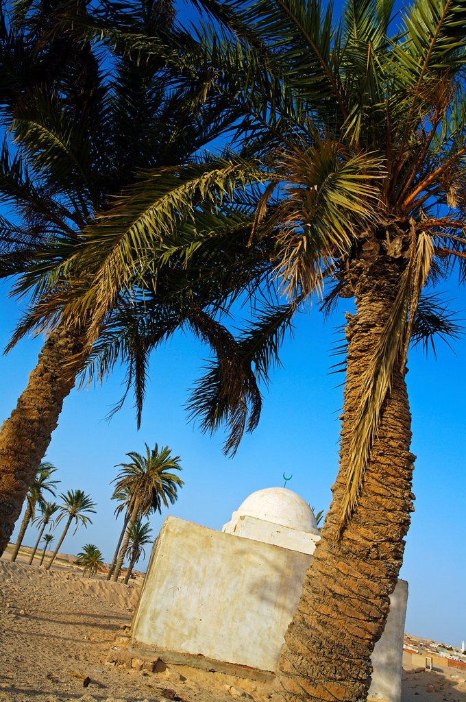Stock Photo: 1566-1167855 Mosque, El Faouar, South Tunisia, Tunisia.
