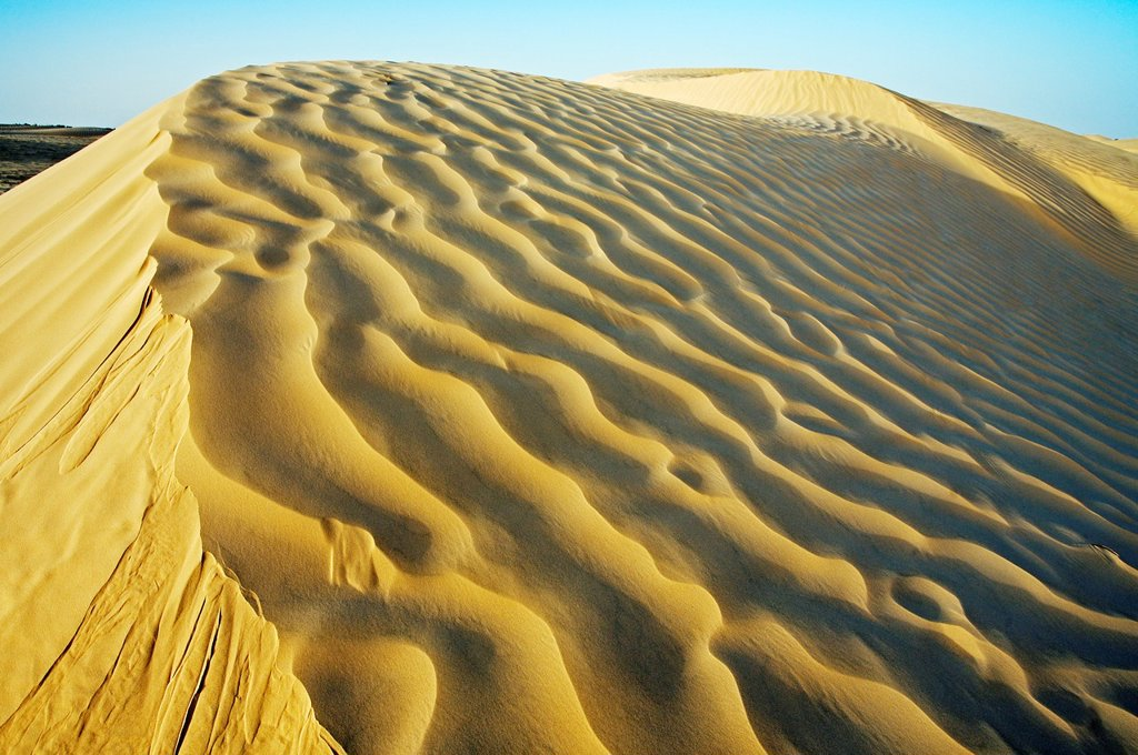 Stock Photo: 1566-1167859 Sand dunes  Sahara Desert, Douz, Tunisia.