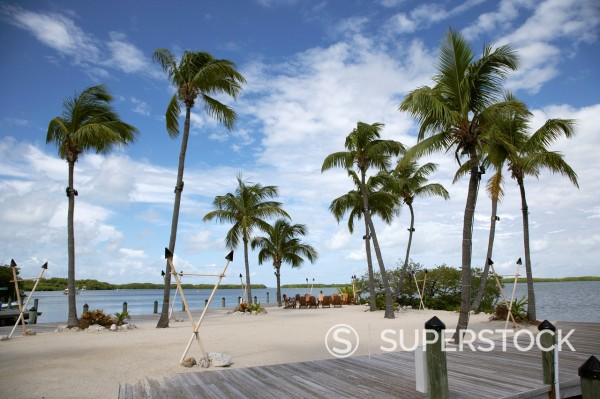 Stock Photo: 1566-1168558 private club restaurant beach at bayside marina islamorada florida keys usa