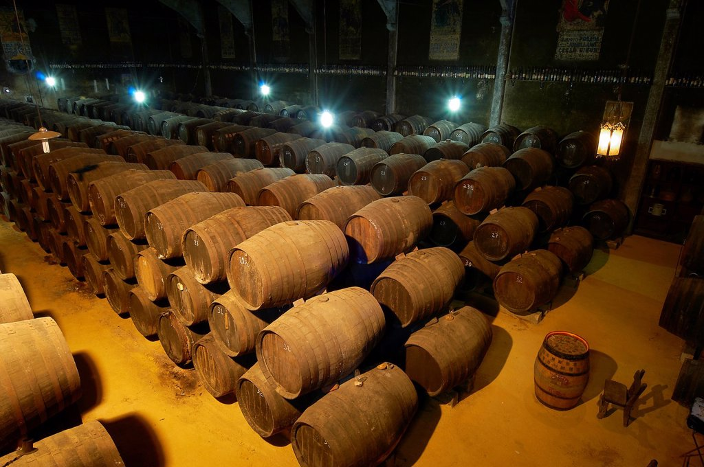 Stock Photo: 1566-1169997 Aguilar de La Frontera, Toro Albala Wine Cellar, Montilla-Moriles Wine Route, Cordoba, Andalusia, Spain.